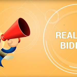 RTB (Real Time Bidding)