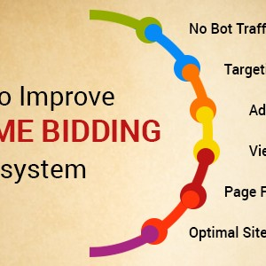 Real Time Bidding Ecosystem